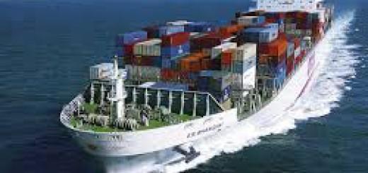 performance audit of Vallarpadam container terminal