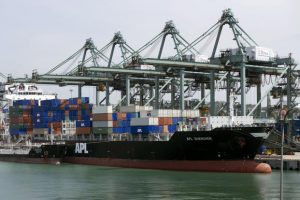 CPT attracts new business through coastal shipping