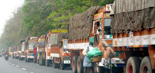 Truck queues at state borders check posts may end soon