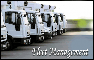Fleet management software for your transport business