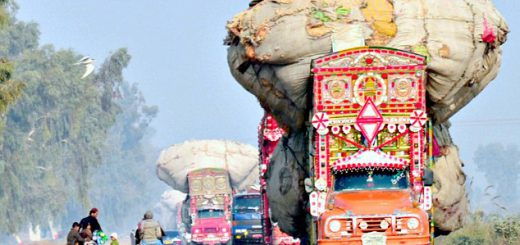 Delhi: Truck weighing machines roll in to cut bad air